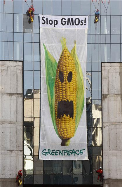 2_GMO시위