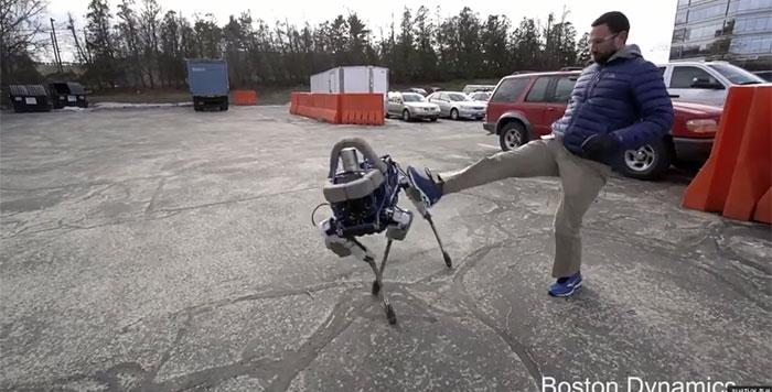 00robotdog1.jpg