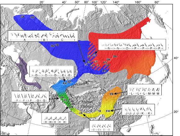 버들솔새의 분포. 아래의 노란색 부분이 버들솔새의 원산지인 히말라야. 북서쪽으로 간 무리는 녹색과 푸른색으로 또 북동쪽으로 간 무리는 주황색과 붉은색으로 표시했다. 빗금친 부분은 이 두 버들솔새가 공존하는 지역이다. 출처:Irwin, D. E., Bensch, S. & Price, T. D. Speciation in a ring. Nature 409, 333-337 (2001)