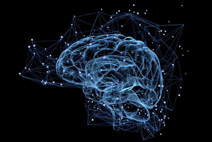 brain_network1.jpg