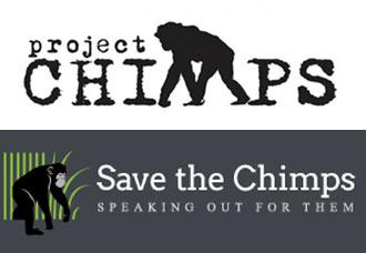 00chimpanzee2.jpg
