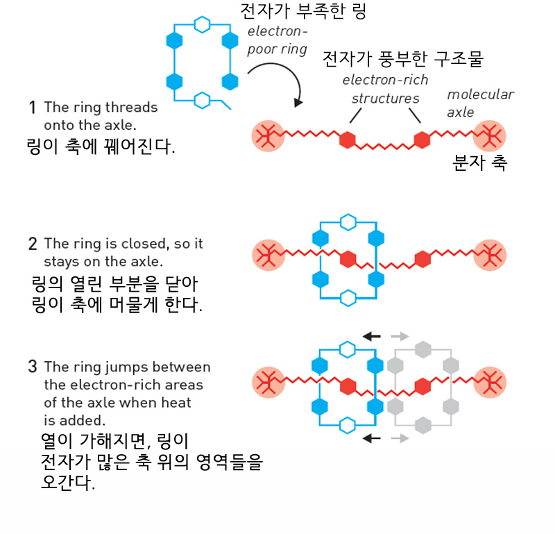 00nobelchemistry4.jpg