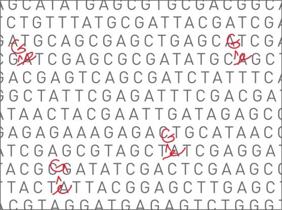 Liu_gene_editing_v2.jpg