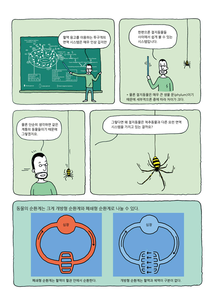 04-crab-03-10.jpg