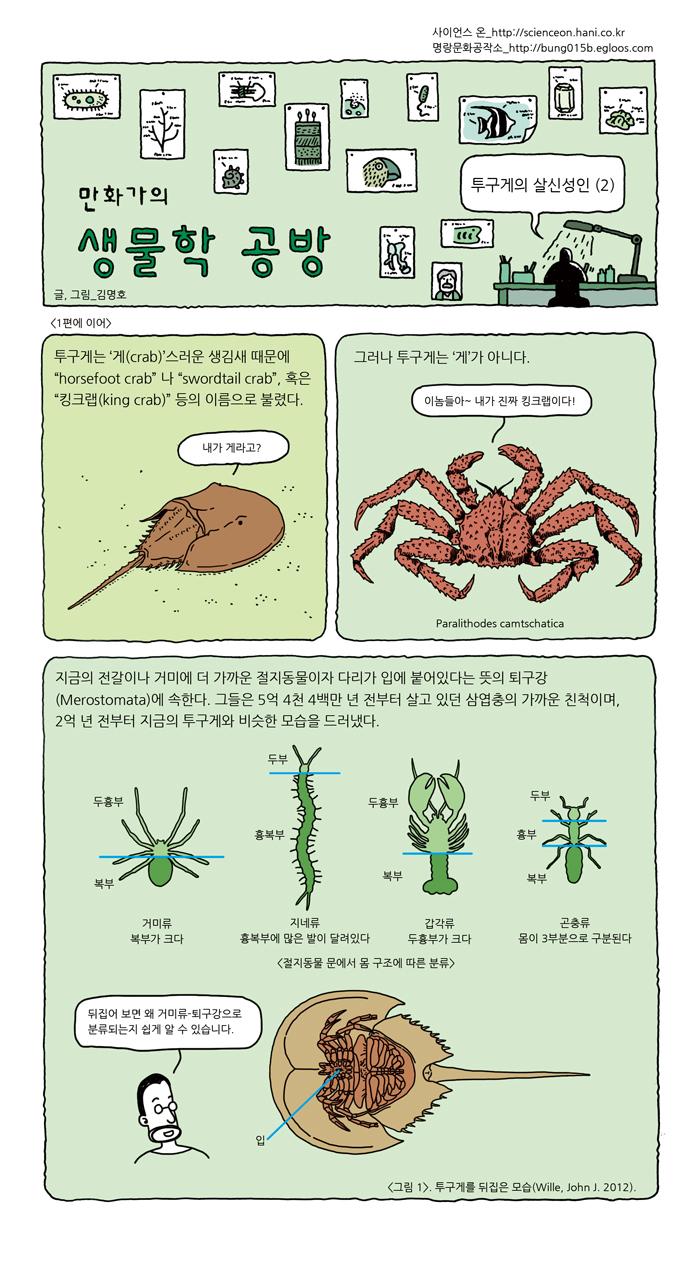 04-crab-02-01-web.jpg
