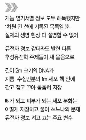 00DNA3D_title.jpg