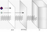 [수첩] 낯선 확률적 위험, 방사선