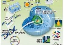 [기획] '그러니 이곳이 생물 과학과 공학의 융합 현장이죠'