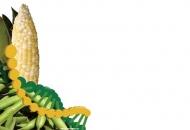 [GMO결산] 온라인 특집을 마치며, 오프라인 특집을 내며