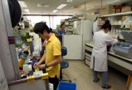 [연재] 학부연수생 '깍두기라도 즐거운 실험실 수습생활'