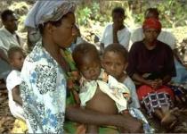 [연재] 말라리아 '연구 의지'인가, '연구비 의지'인가?